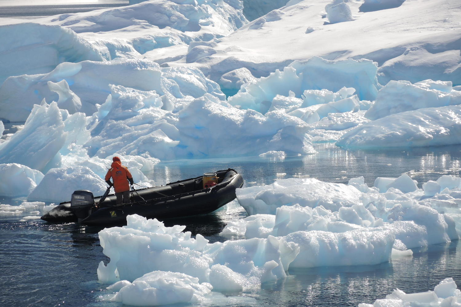 Zodiac navigating through the icebergs early in the season off Danco Island