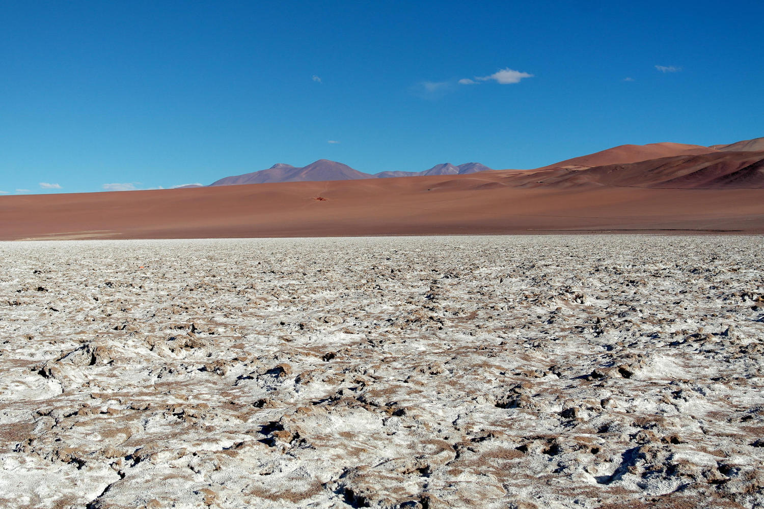 The salt flats of Argentina's puna