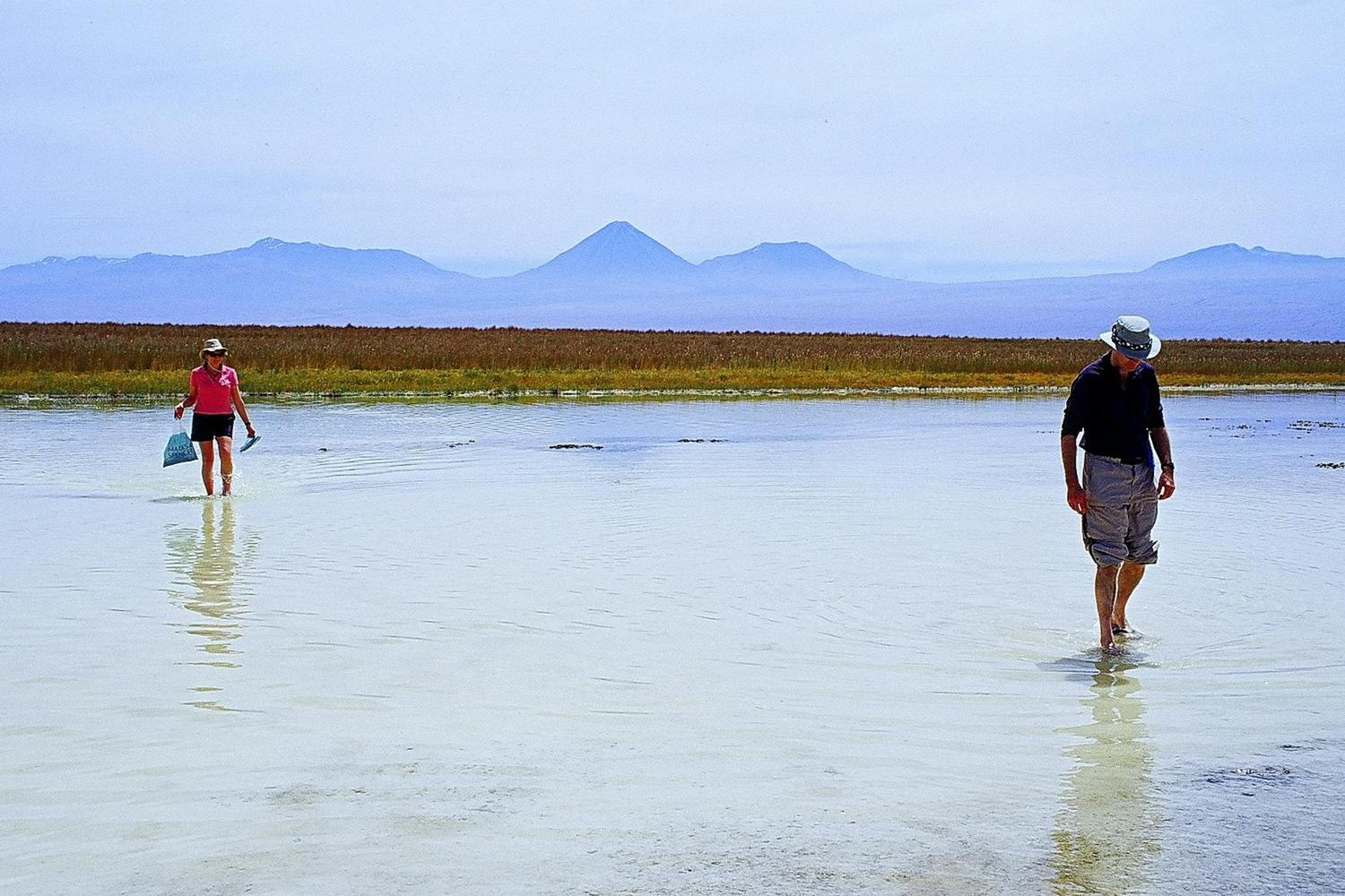 Walking across the lagoons of the Atacama Salt Flats