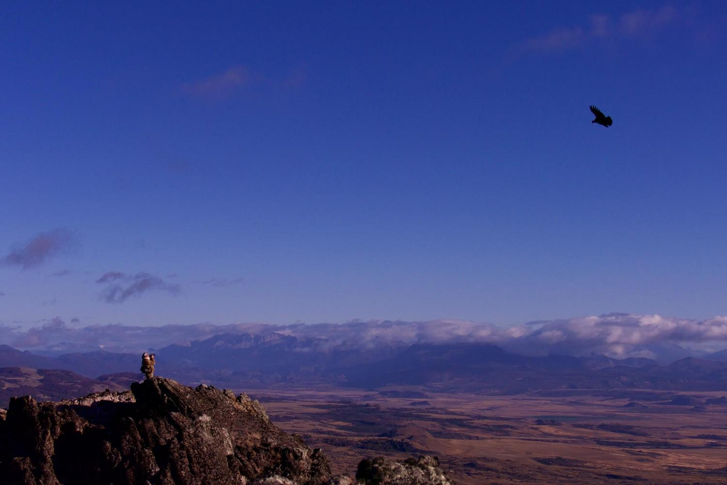 Watching condors over the Patagonian steppe