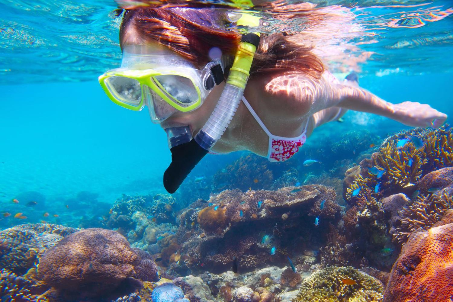 Snorkelling the clear waters off Costa Rica's Caribbean coastline