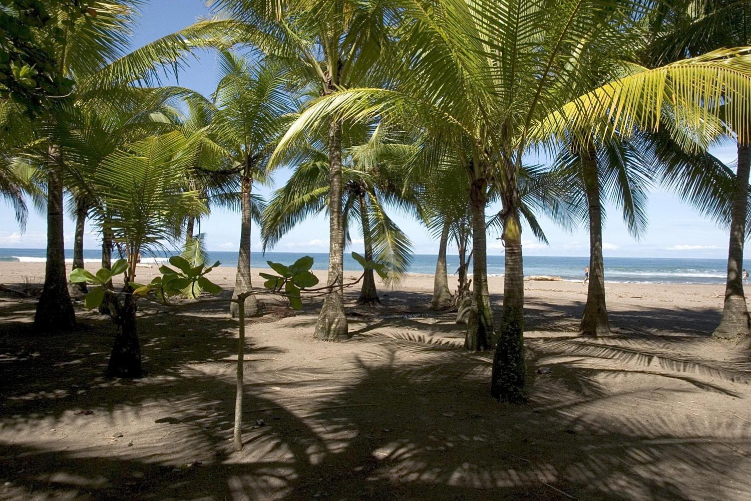 The beach at Samara, Costa Rica
