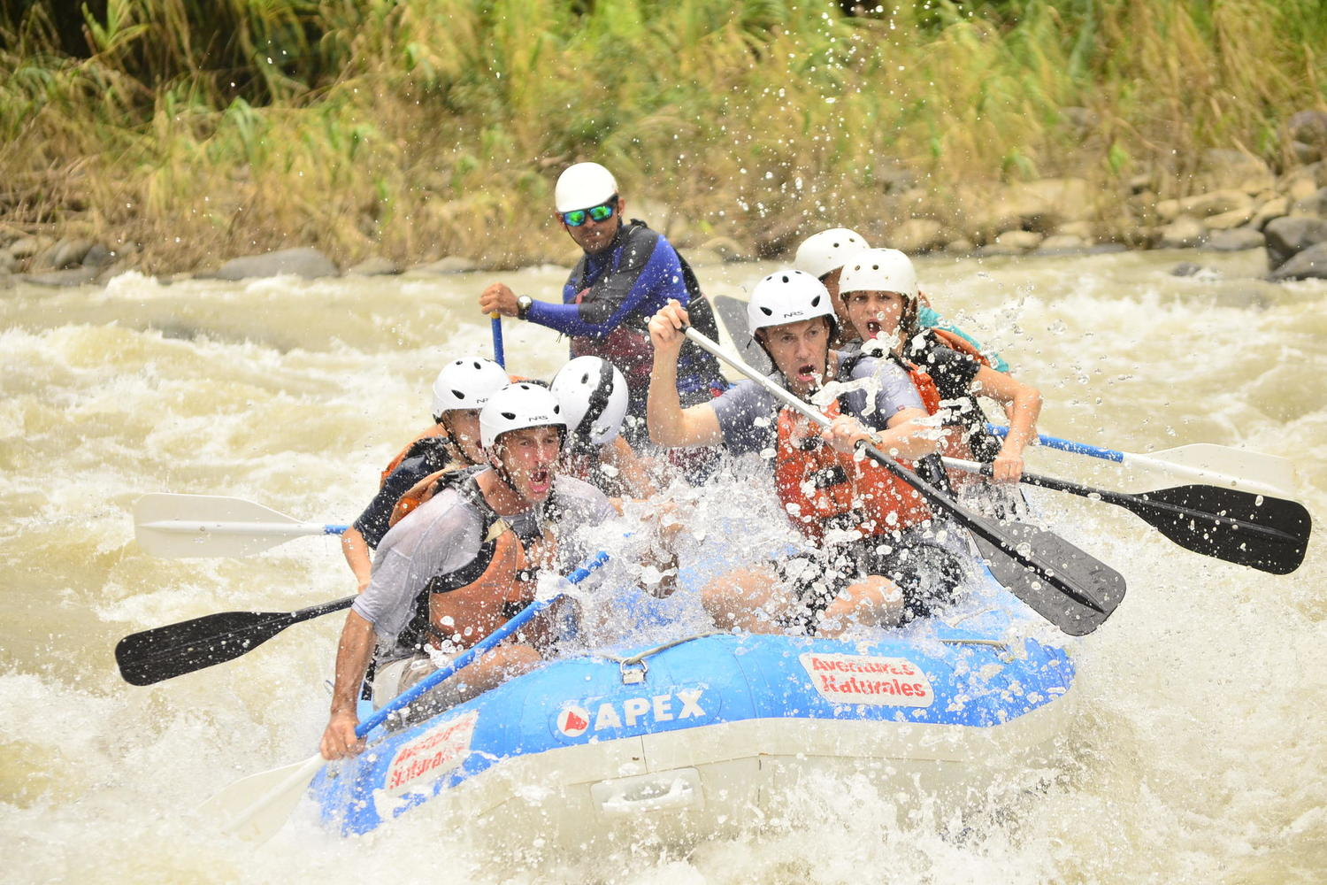 Wild action on the Pacuara River