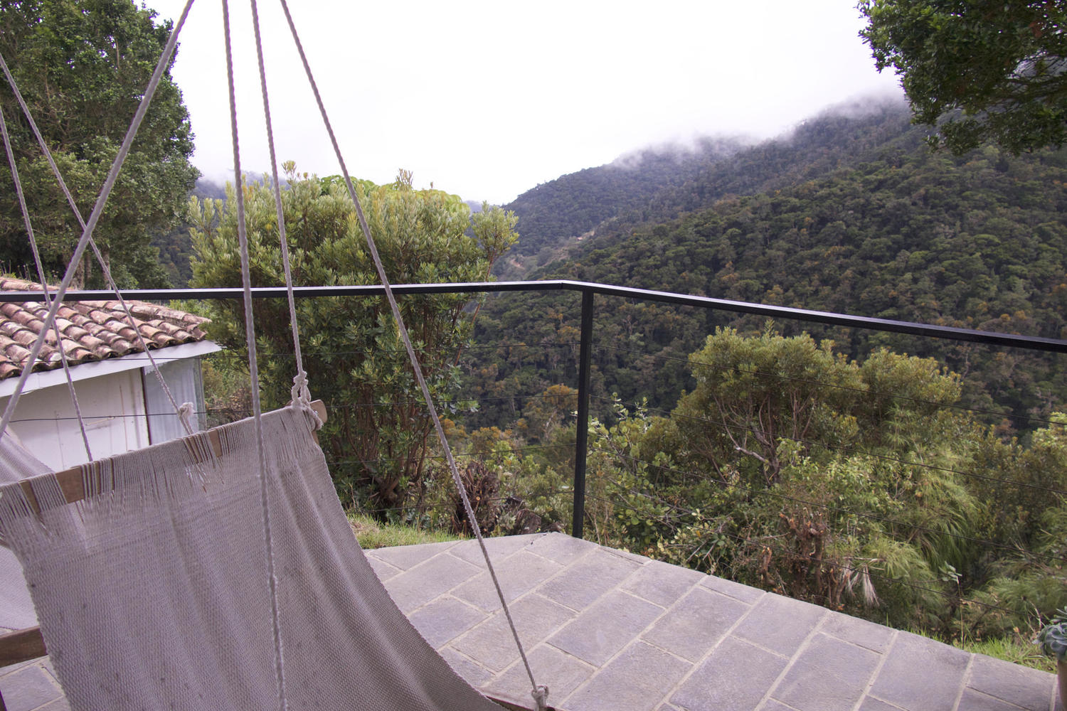 Views over the cloudforest from Dantica Lodge