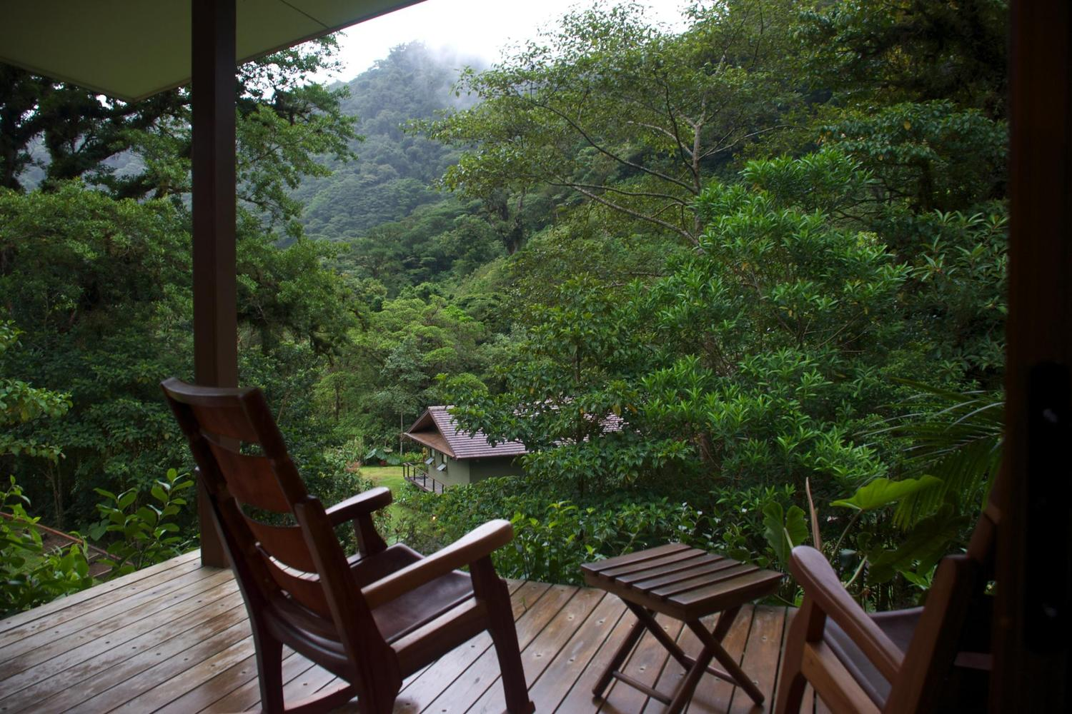 Looking out from the Trogon Lodge in the San Gerardo cloud forest area