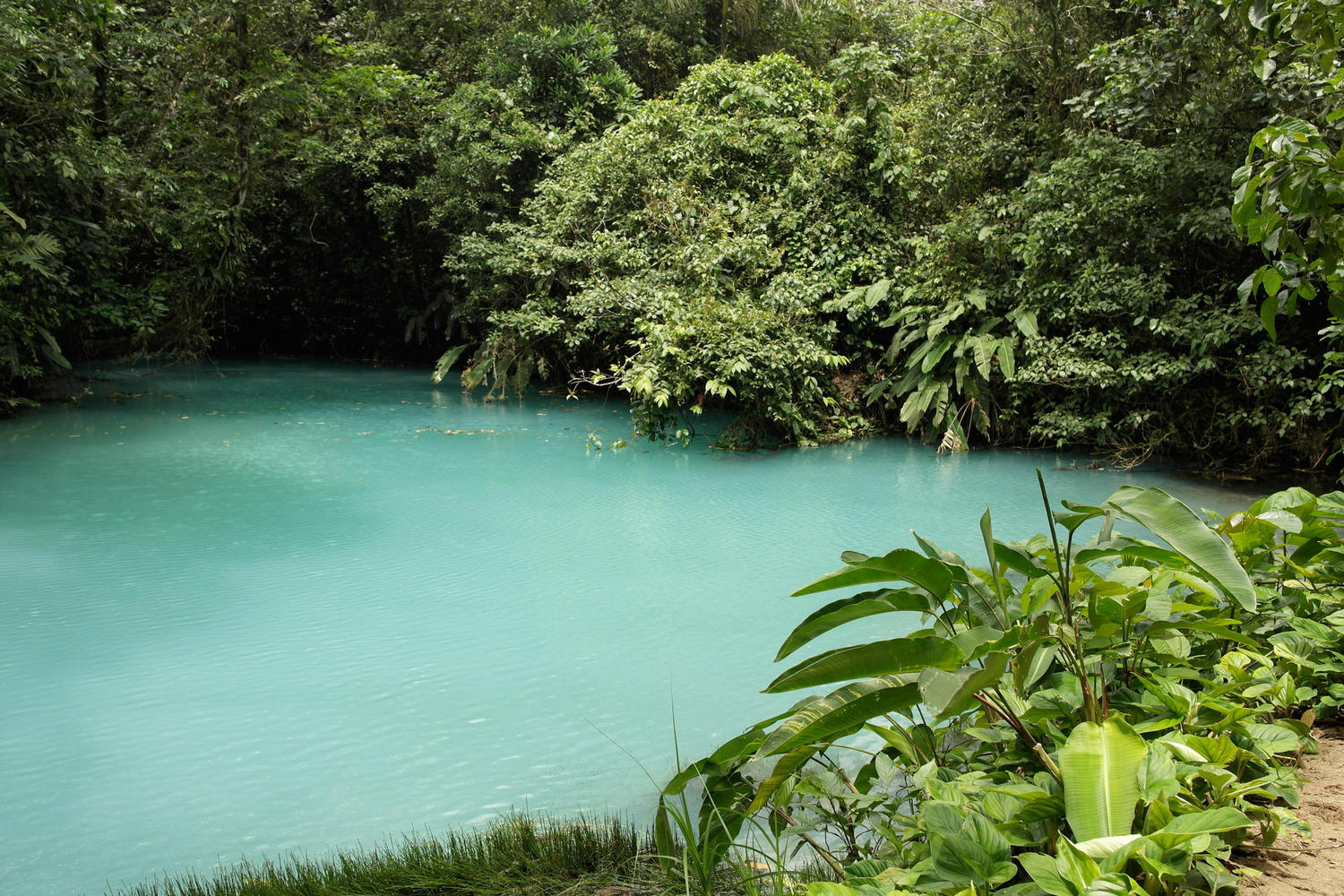 The blue lagoon in Volcano national park, Tenorio