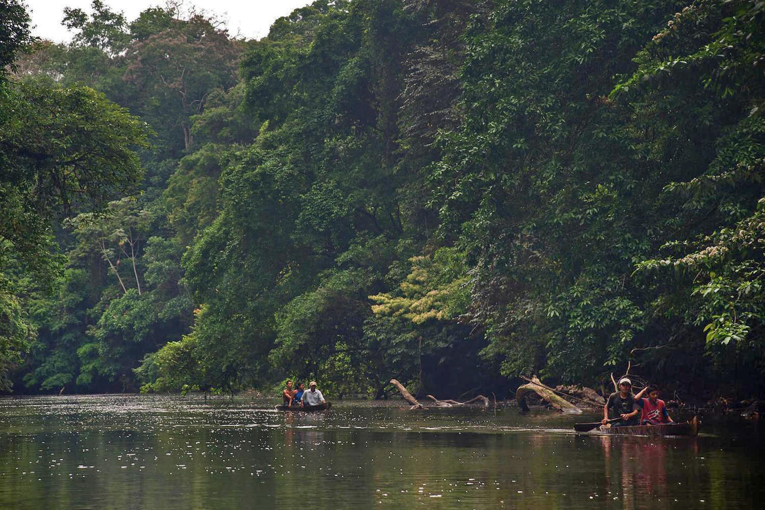 Dugout canoes inside the Indio Maiz Natural Reserve in Nicaragua