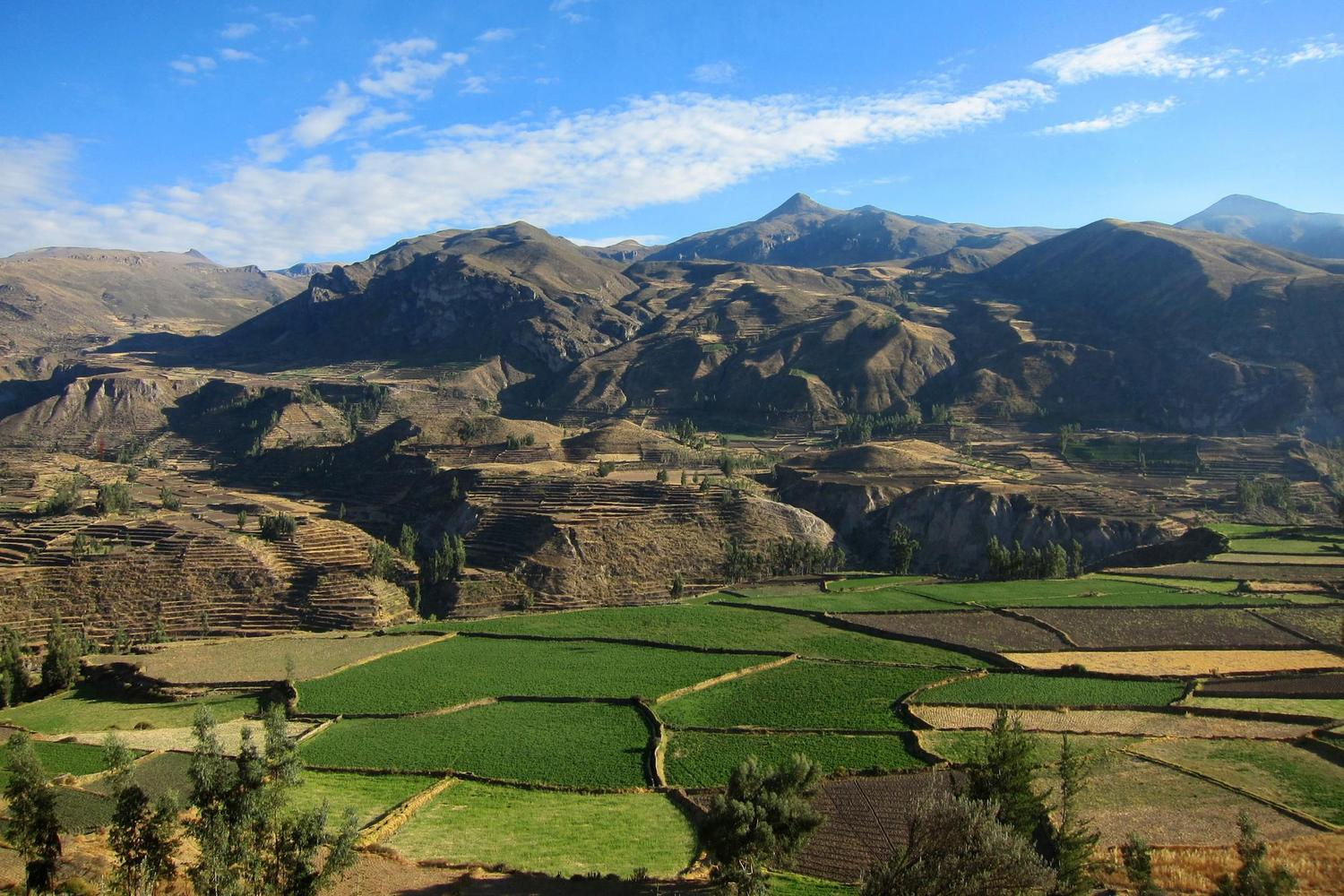 Looking out over the Colca Canyon in southern Peru