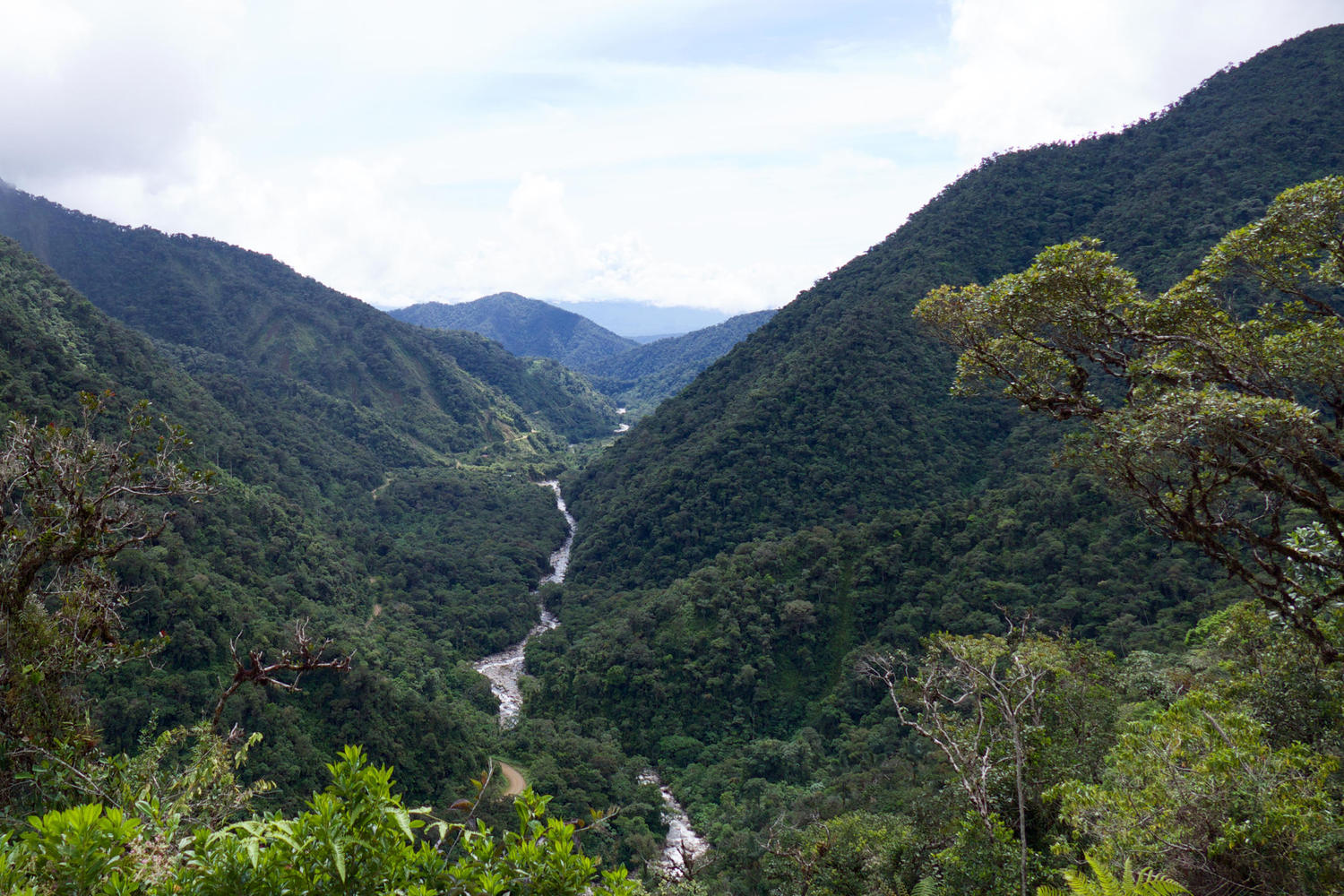 The road to Manu offers spectacular views across the cloud forest