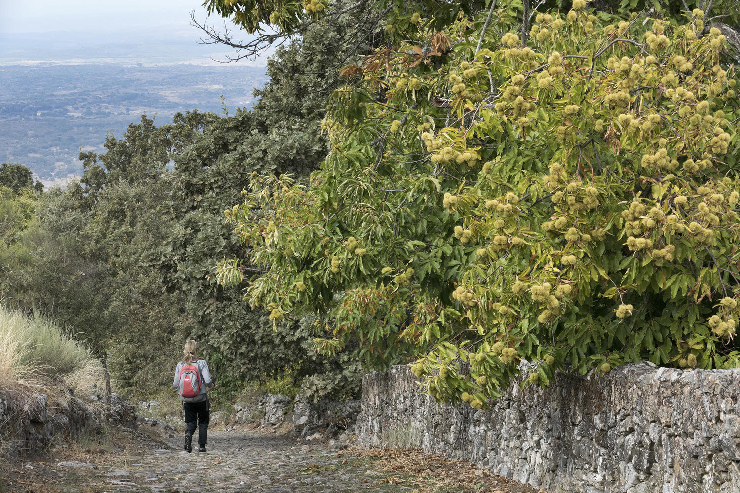 Walking down the steep medieval pathway from Marvao towards Castelo de Vide
