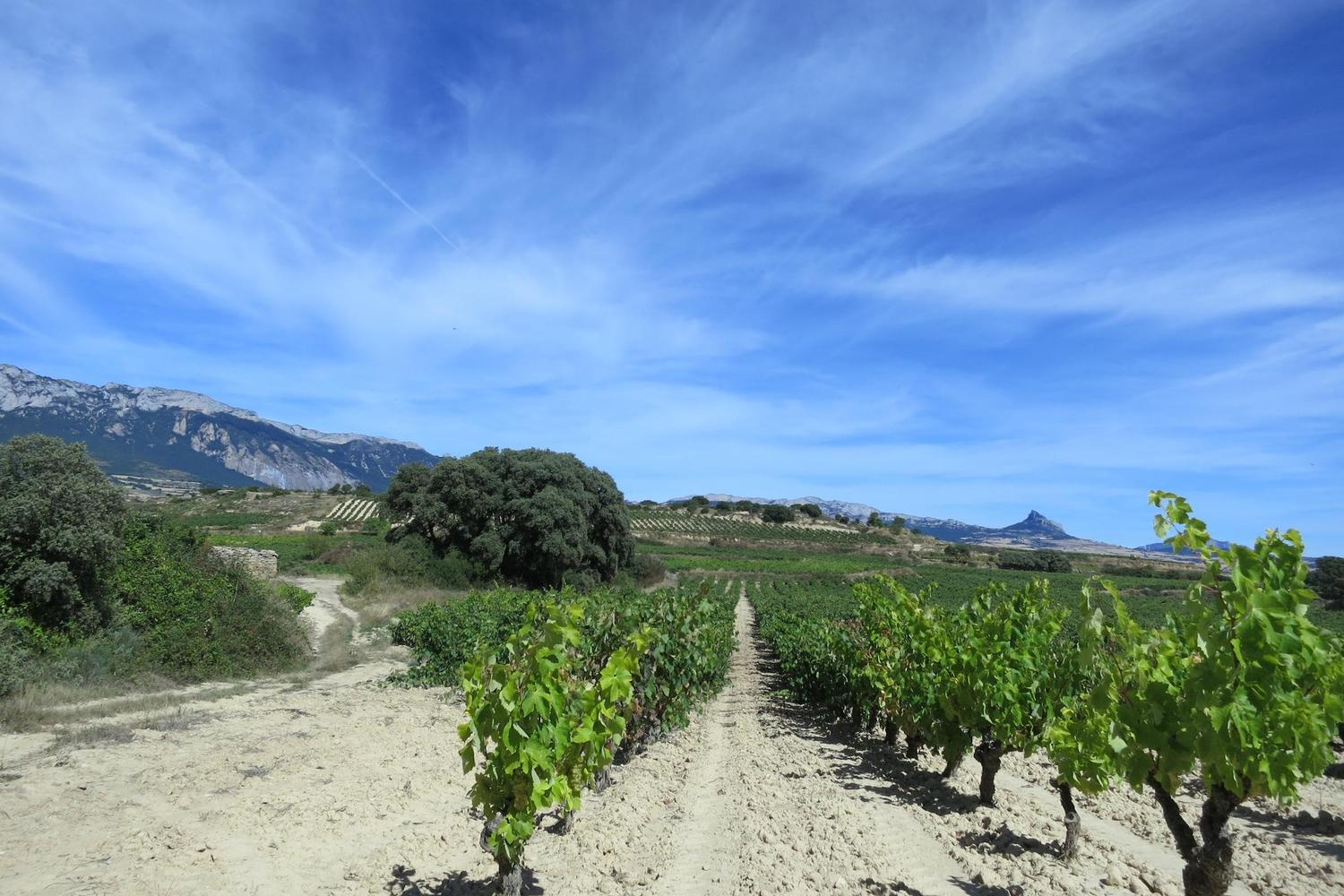 Walking on the GR routes of La Rioja