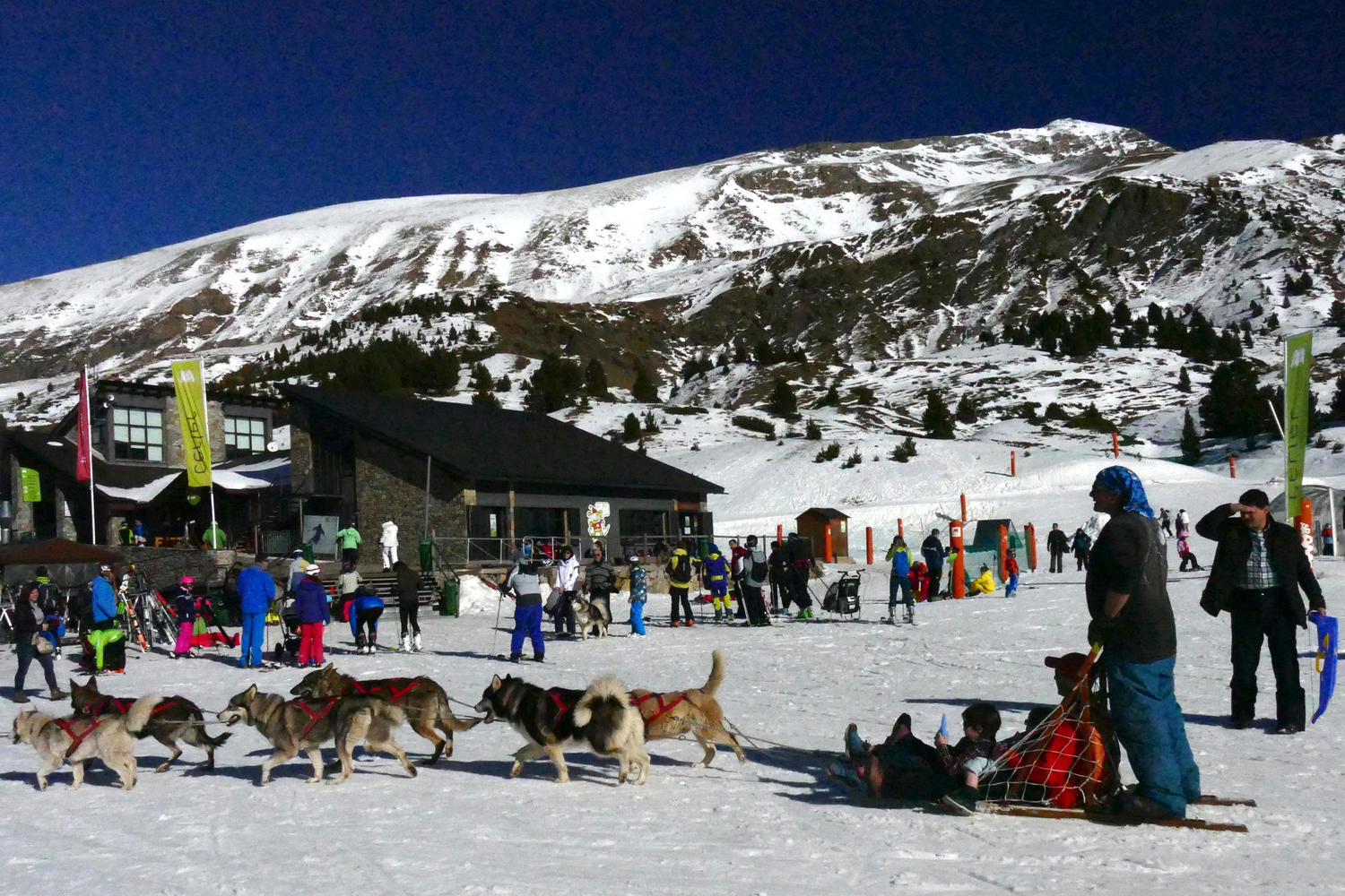 Husky sledding is another fun pastime on offer in Cerler